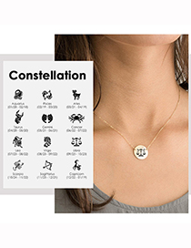 Collar Con Colgante De Zodiaco De Acero De Titanio