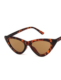 Gafas De Sol Triangulares De Resina Cat Eye